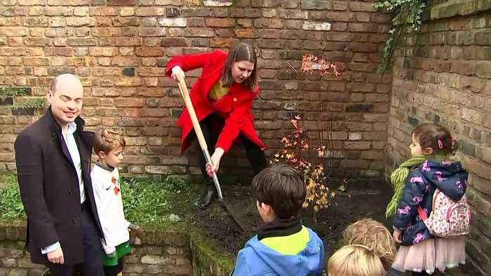 Swinson plants tree to dig into Tories over pledge clash