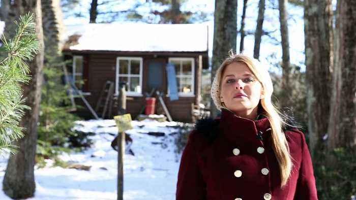 The Lost Footage of Leah Sullivan Movie