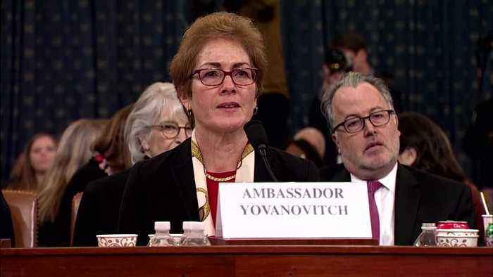 Yovanovitch holds back tears when asked about family