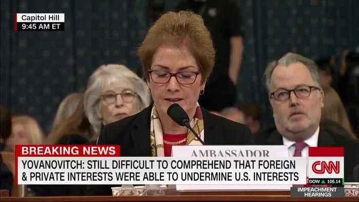 Marie Yovanovitch testifies, touts diplomats
