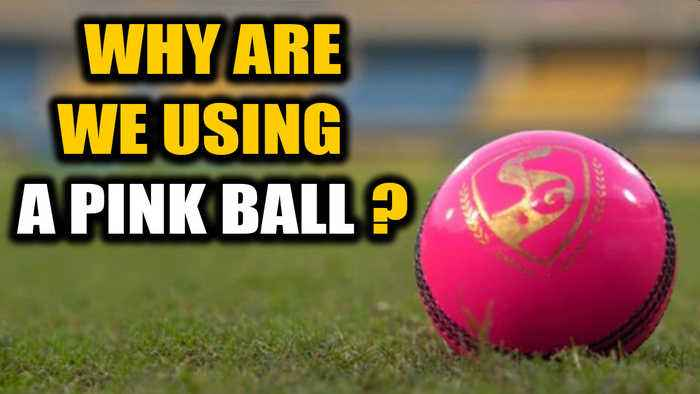 India-Bangladesh Day-Night test match: Why is a pink ball being used? | Oneindia News
