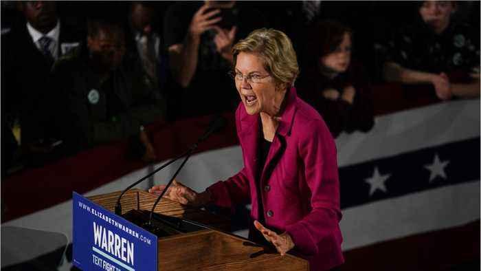 Elizabeth Warren Called Out Facebook And Trump