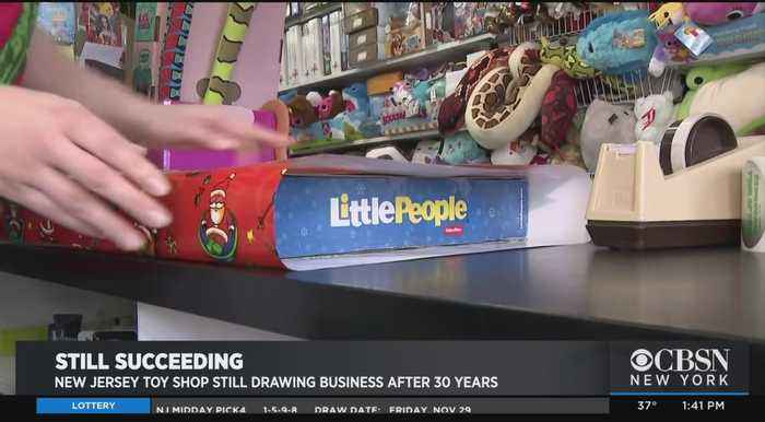 Tiny Toy Store Making A Stand Against Online Giants, Big Retailers