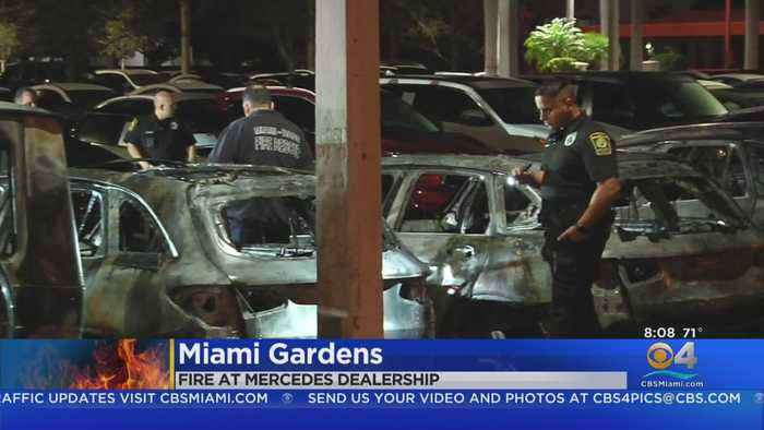 Fire Destroys Several Vehicles At Mercedes-Benz Dealership In Miami Gardens