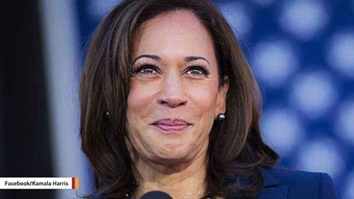 Kamala Harris Reportedly Drops Out Of 2020 Presidential Race