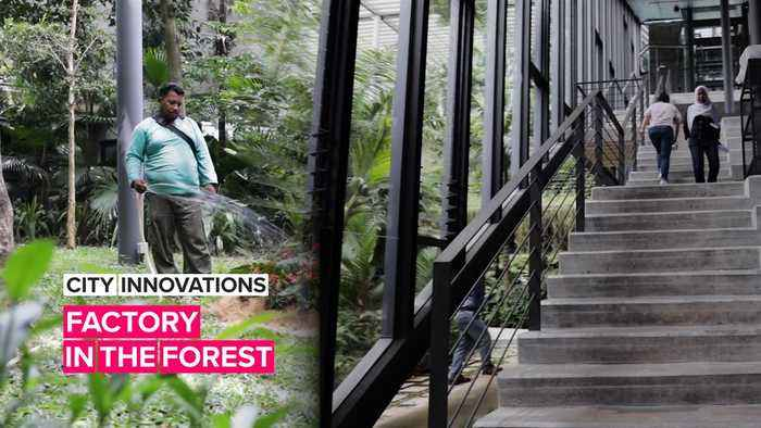 City Innovations: This sustainable factory exists within a forest