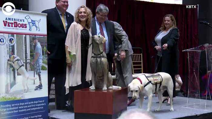 WEB EXTRA: Sully The Service Dog Statue