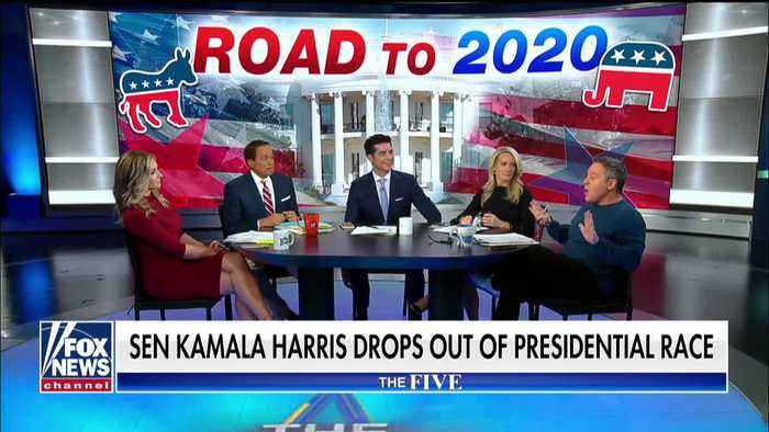 Gutfeld slams 'jerk' Kamala Harris after she drops out of race