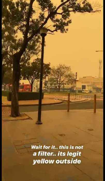 'This is not a filter': New South Wales bushfires turn sky yellow