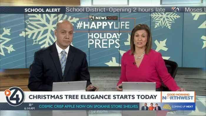 Christmas Tree Elegance starts today