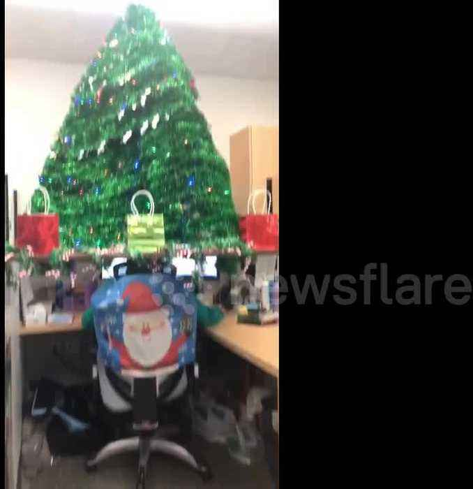 gngerbread chrstmas cubcle chrstmas offce decor.htm oregon office employee gets in the festive one news page video  oregon office employee gets in the