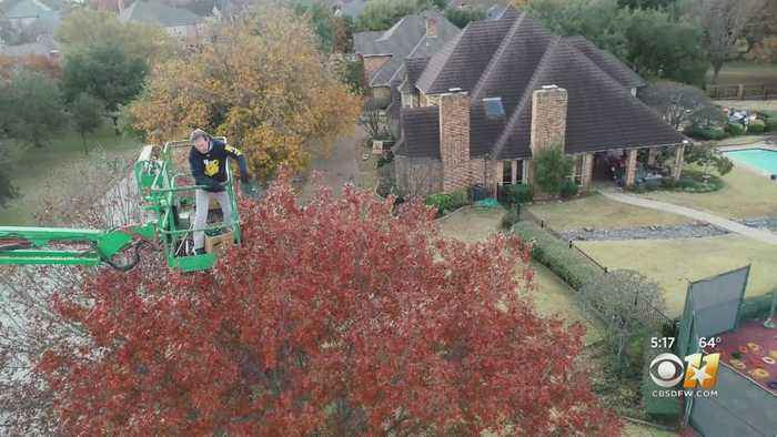 Arlington Area Man Puts Up Elaborate Christmas Lights Display In Honor Of Late Mother