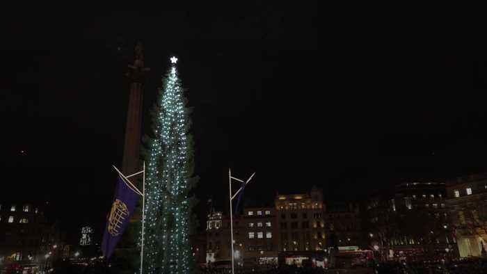 Trafalgar Square Christmas tree lights switched on