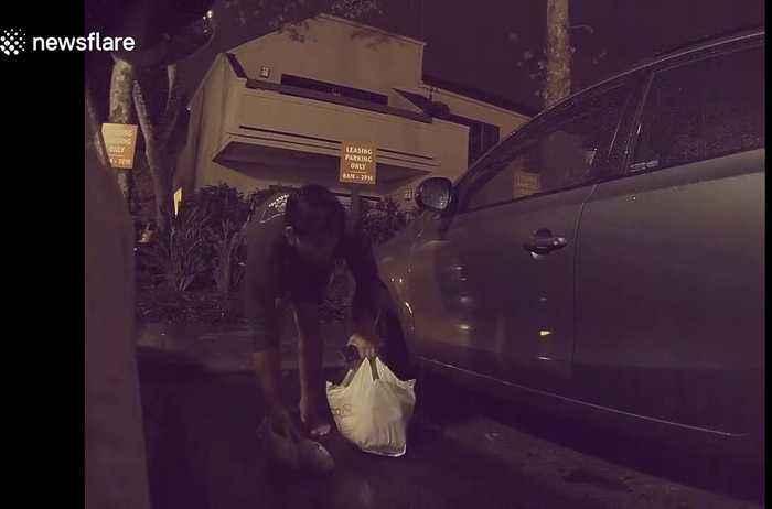 Tesla Sentry Mode surveillance system helps catch a vandal slashing tires