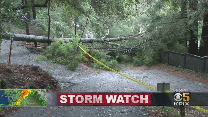 Bay Area Gets A Drenching As Storm Brings Flooding, Downed Trees
