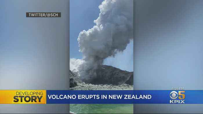 Bay Area Family Narrowly Escapes Death In New Zealand's White Island Volcanic Eruption