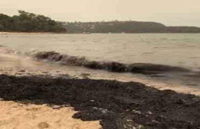 Bushfire ash turns Sydney beach sand black