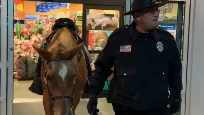 Police horse enters pet store