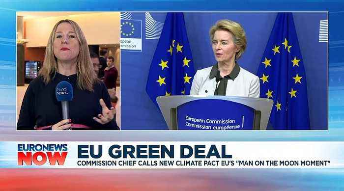 EU to become 'world's first climate-neutral continent', says European Commission chief Von der Leyen