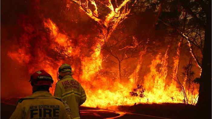 Australia's State Of New South Wales Declares Second State Of Emergency