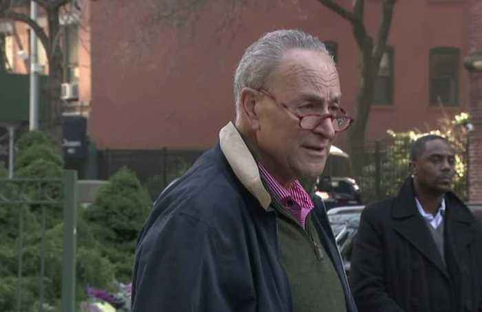 Schumer demands witnesses at impeachment trial, citing new email