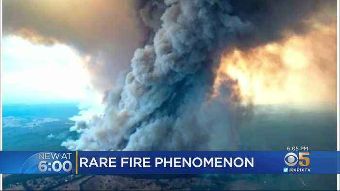 Bay Area Climate Scientists Study Rare Cloud Generated By Australia Wildfires