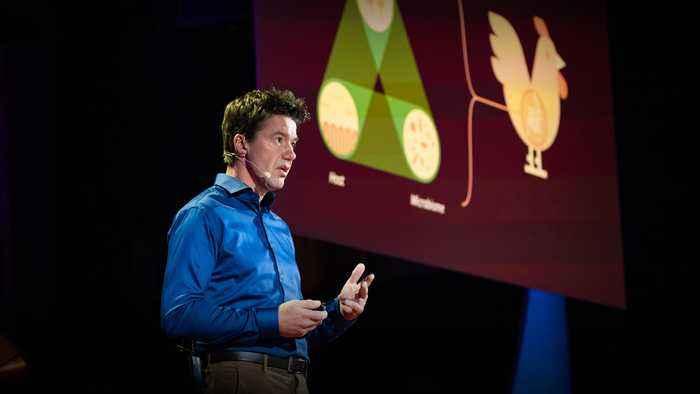 The urgent case for antibiotic-free animals | Leon Marchal