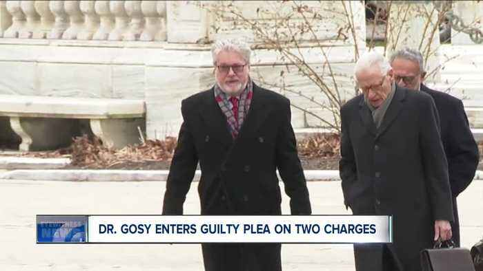 Dr. Gosy pleads guilty to two counts