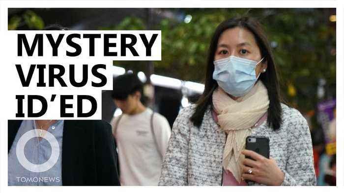 Mystery pneumonia virus identified in China