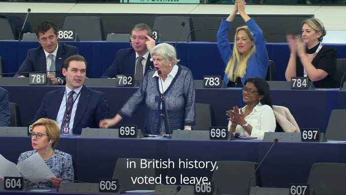 Ann Widdecombe gets into heated debate with Dutch MEP