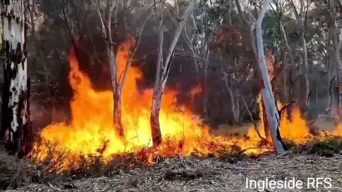 Australia softens climate change rhetoric as bushfires, and voters, rage