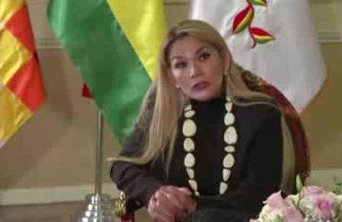 Bolivia's interim pres. to fight against more 'Evo'