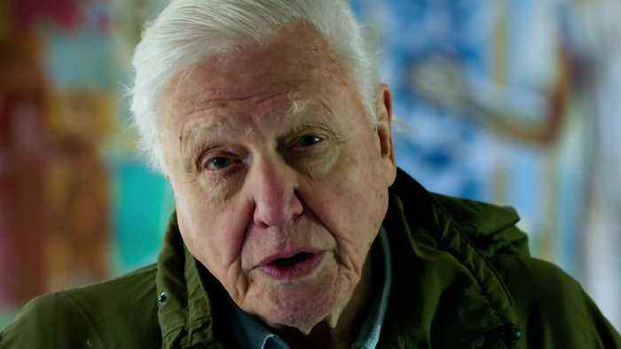 Sir David Attenborough warns that humans 'have overrun the world' in new trailer
