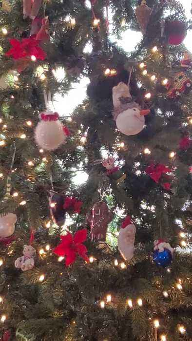 Cat Climbs All Over Decorated Christmas Tree