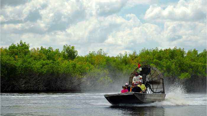 Florida Agrees To Purchase 20,000 Acres Of Everglades To Safeguard It From Oil Drilling
