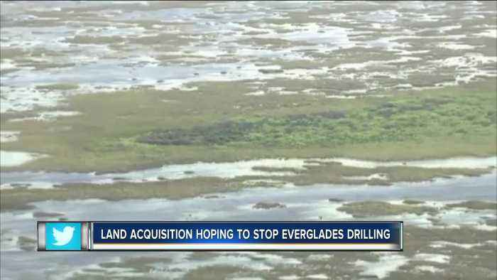 Florida to buy 20,000 acres of Everglades land to prevent oil drilling in western Broward County