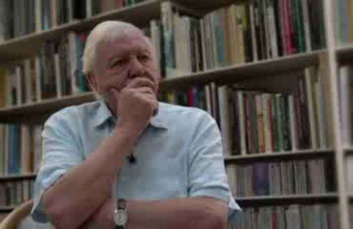 'The moment of crisis has come' - naturalist Attenborough on climate change