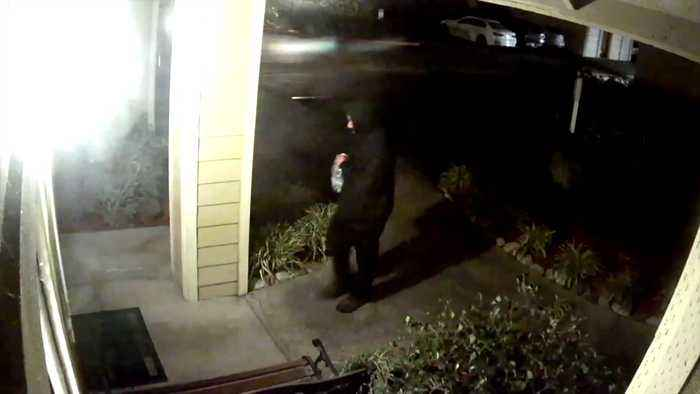 Manhunt Underway for Man Seen in Video Setting Fire to Apartment Leasing Office