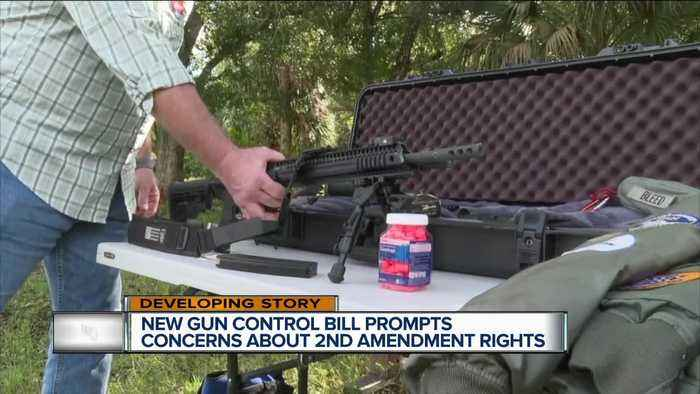 New senate bill aims at public safety and gun purchases