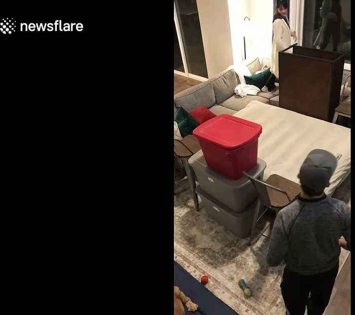 Relationship goals! Time-lapse shows US couple build 'fort' together in adorable annual New Year's Eve tradition