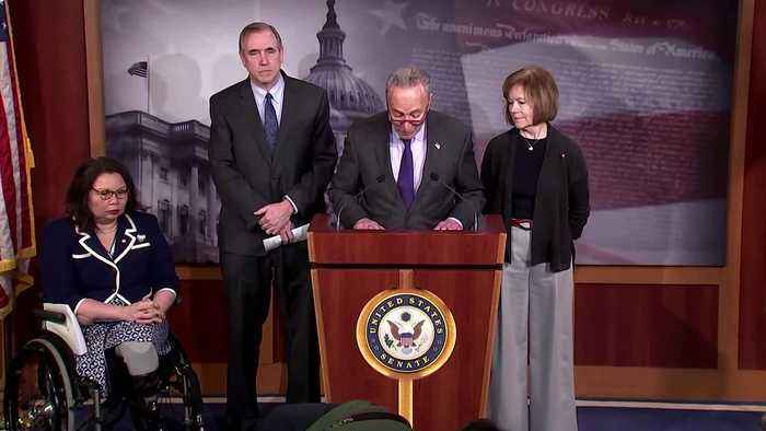 'I don't think the president's counsel did a very good job': Schumer