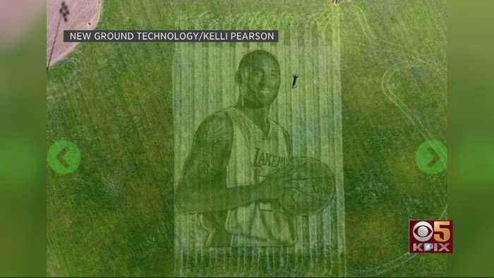 Kobe Bryant Remembered With 115 Ft. Grass Tribute On Pleasanton Field