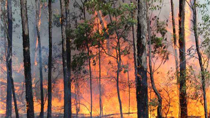 Scorching Temps And High Winds Bring Renewed Wildfire Threats To Australia