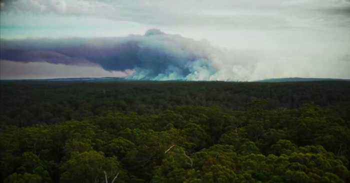 The Bush Fires In Australia Have Revealed A Man-Made System That Is Older Than The Pyramids In Egypt