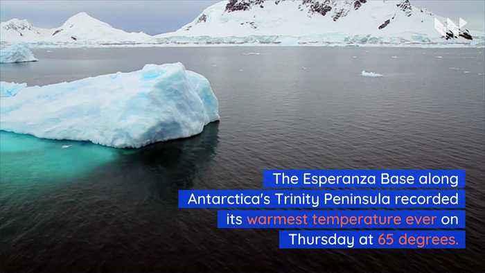 Antarctica Hits Record High Temperature