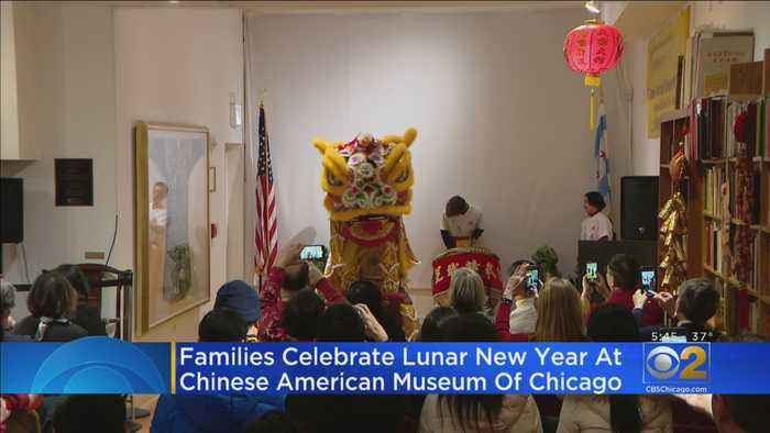 Families Celebrate Chinese Lunar New Year
