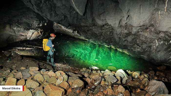 Scientists Discover World's Largest Cave Fish