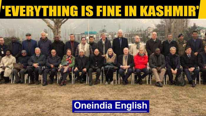 Oppn claims foreign envoys in Kashmir meet only pro-govt groups| OneIndia News