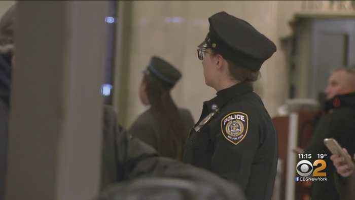 Demanding Answers Gets Action: MTA Police Officers Step Up Presence In Grand Central Terminal