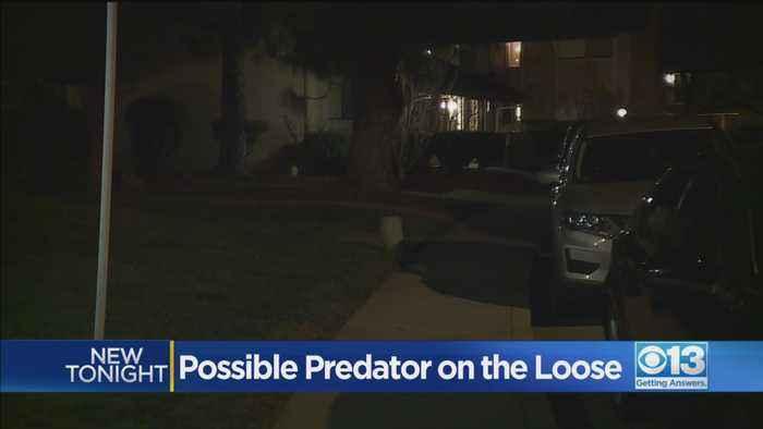 Possible Predator On The Loose In Davis